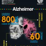 La Enfermedad Alzheimer es la causa más frecuente de deterioro cognitivo en personas mayores de 60 años. Afecta inicialmente la memoria de hechos recientes y progresa afectando otras áreas hasta la inhabilitación completa.